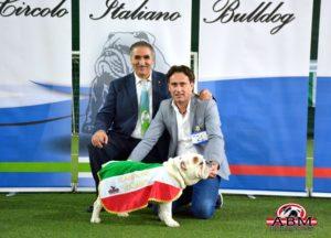 elite campion italiano 3