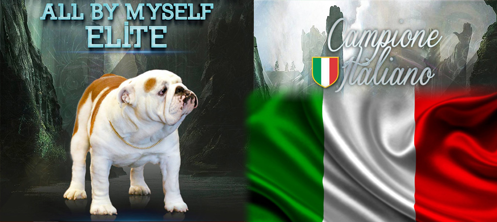 elite campion italiano